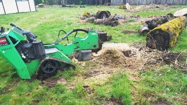 Stump-Grinding-Danshaplandscape-640
