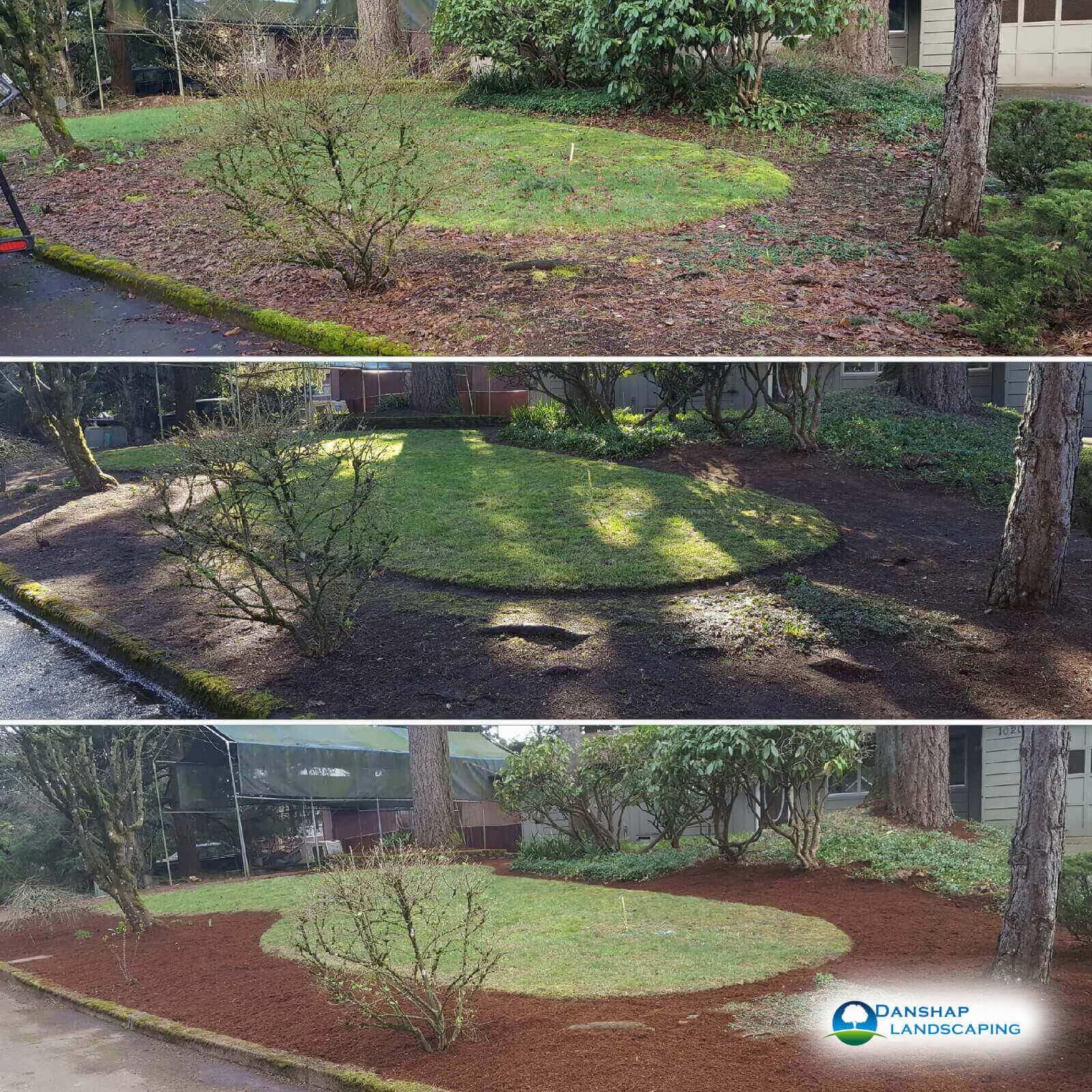 Yard-Cleanup-danshaplandscape-2