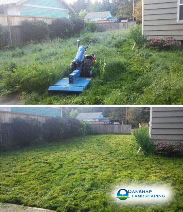 Yard-Cleanup-danshaplandscape-12