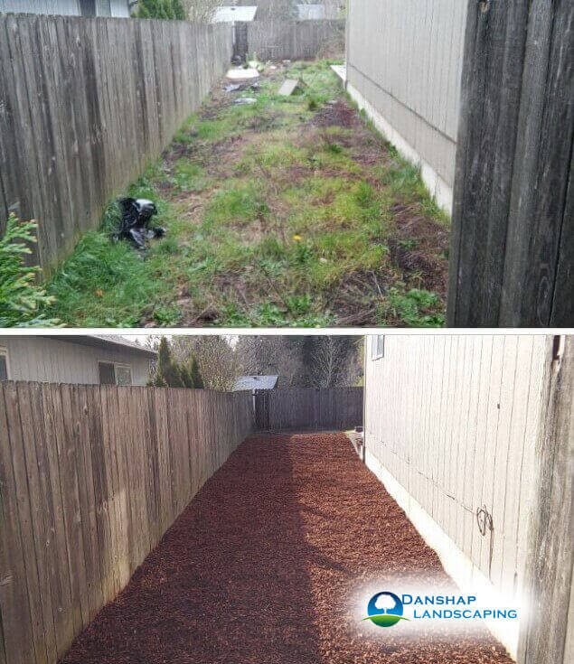 Yard-Cleanup-danshaplandscape-9