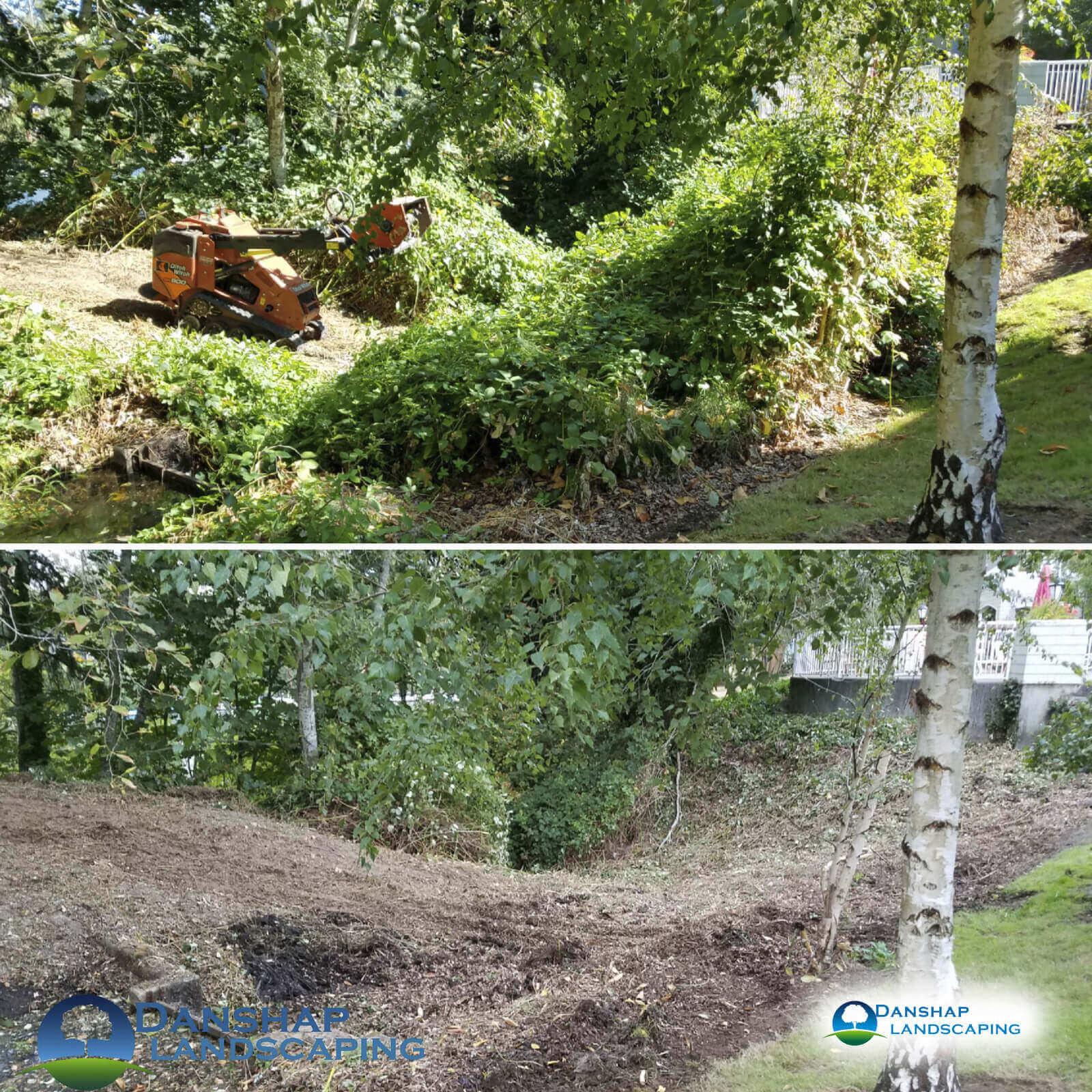 Land-Clearing-danshaplandscape-6