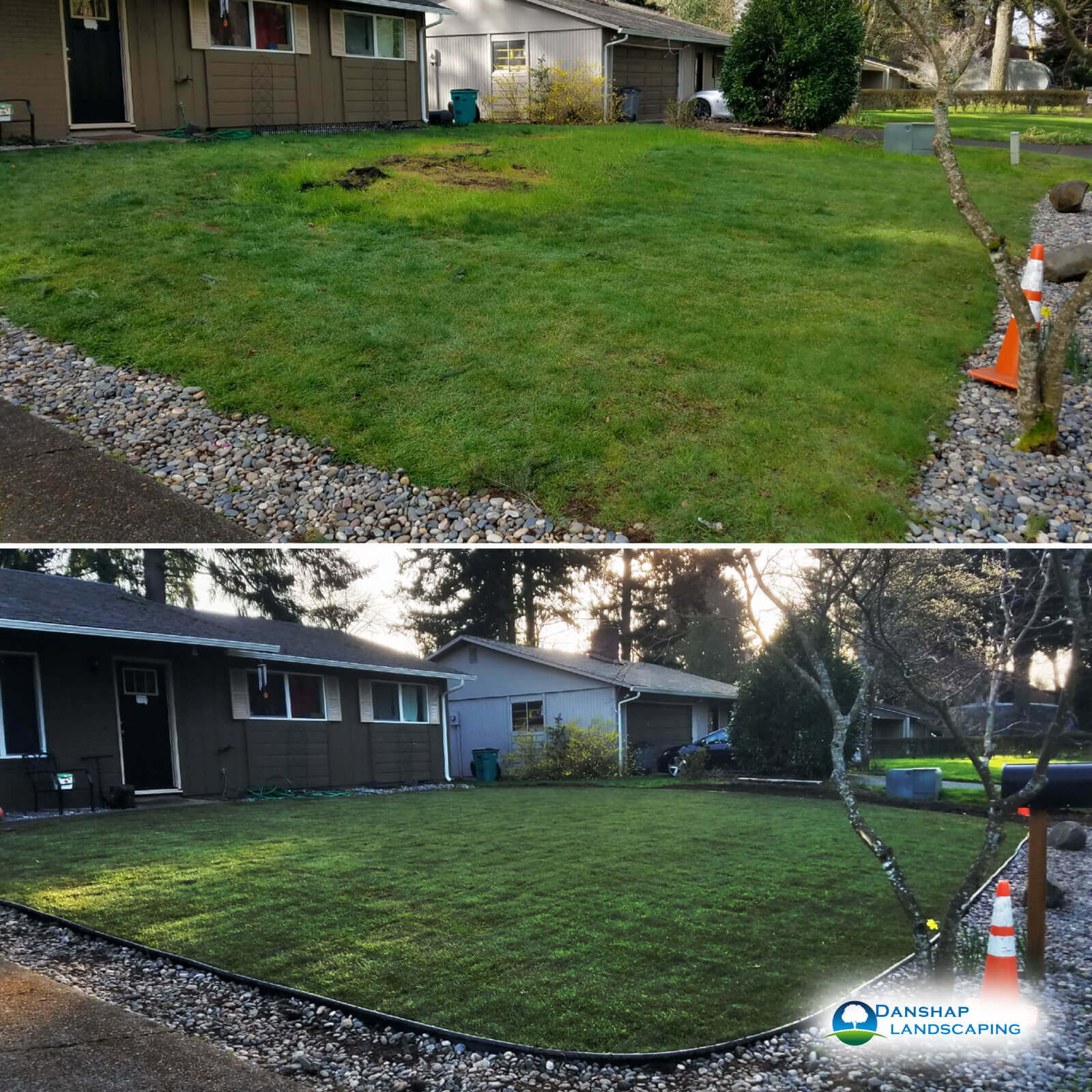 Sod-Replacement-Danshaplandscape-Gallery-49