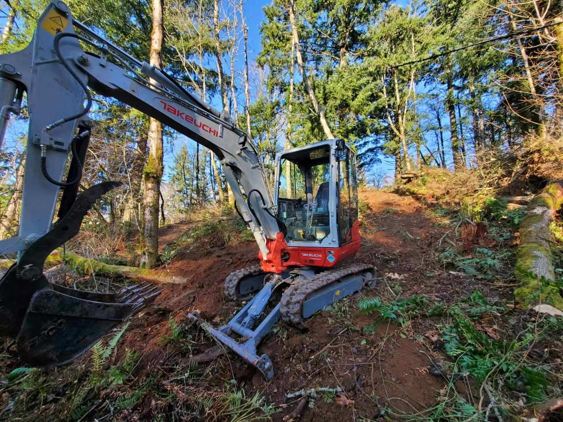 Land Clearing 5