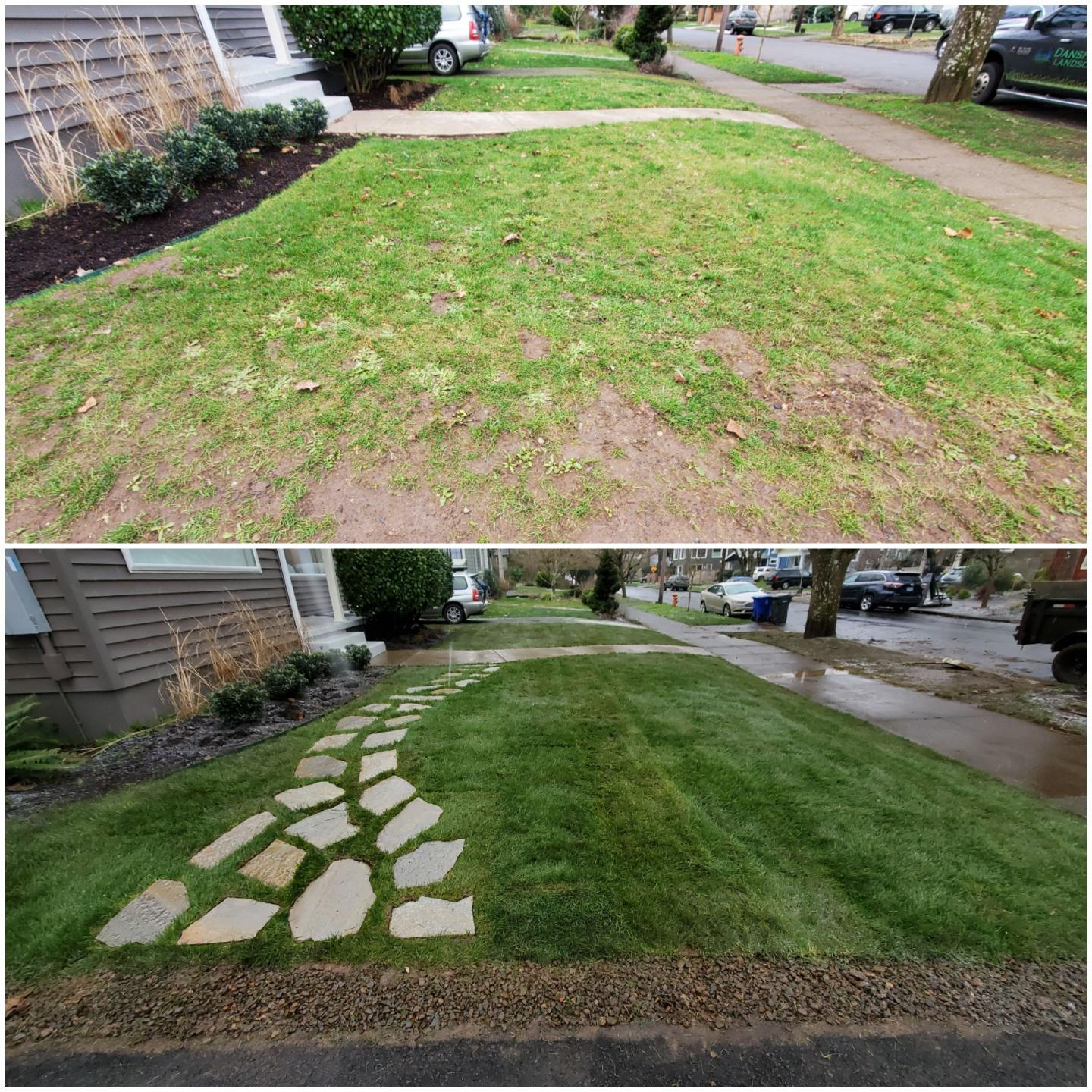 Before and After Sod Install